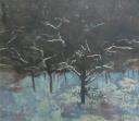 Zimní sad I - Roman Hudziec