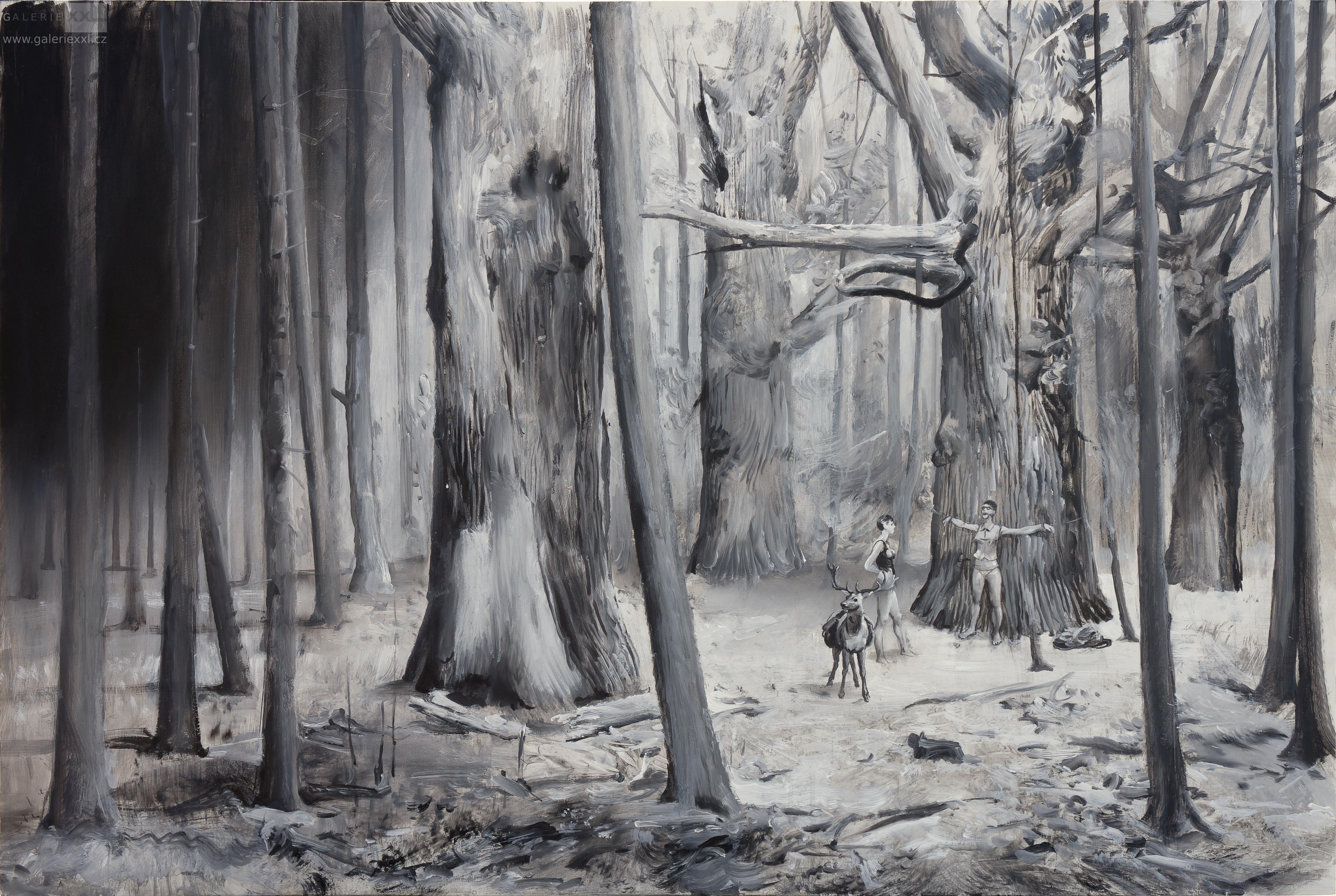 Lesní romantika (Zdeněk Daněk)